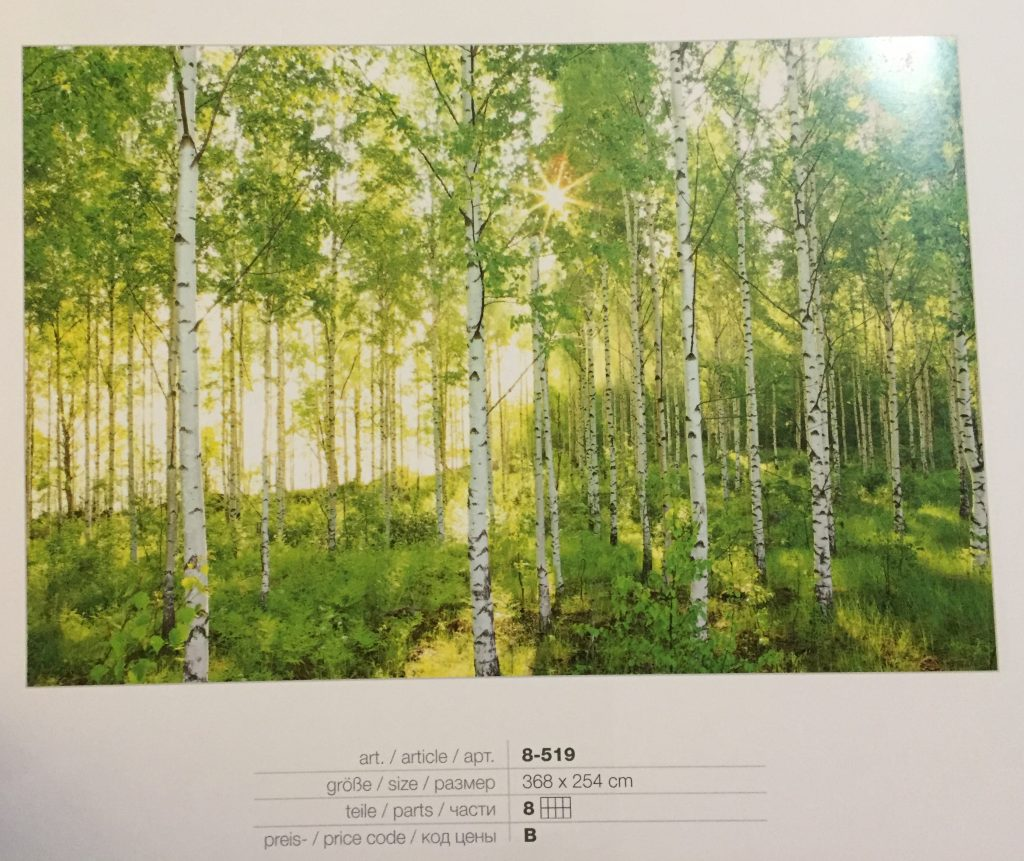 Fotomural bosque luz