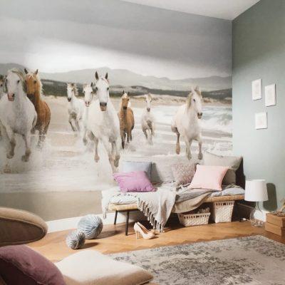Fotomural caballos