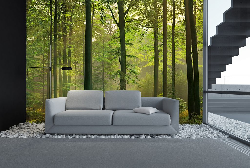 00216_Interior_Autumn_Forest