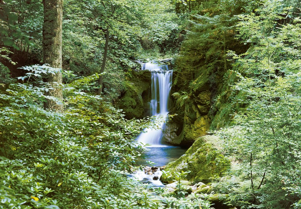 00279_Waterfall_in_Spring